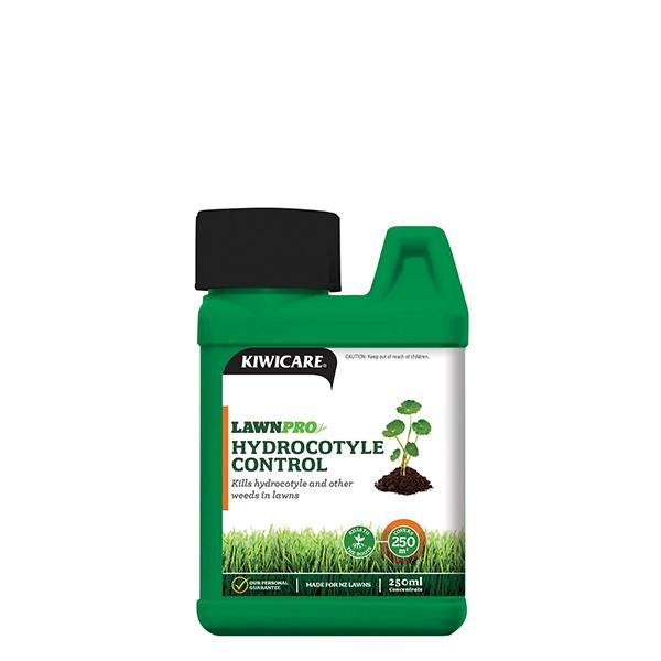 Lawnpro Hydrocotyle Get Rid Of Hydrocotyle