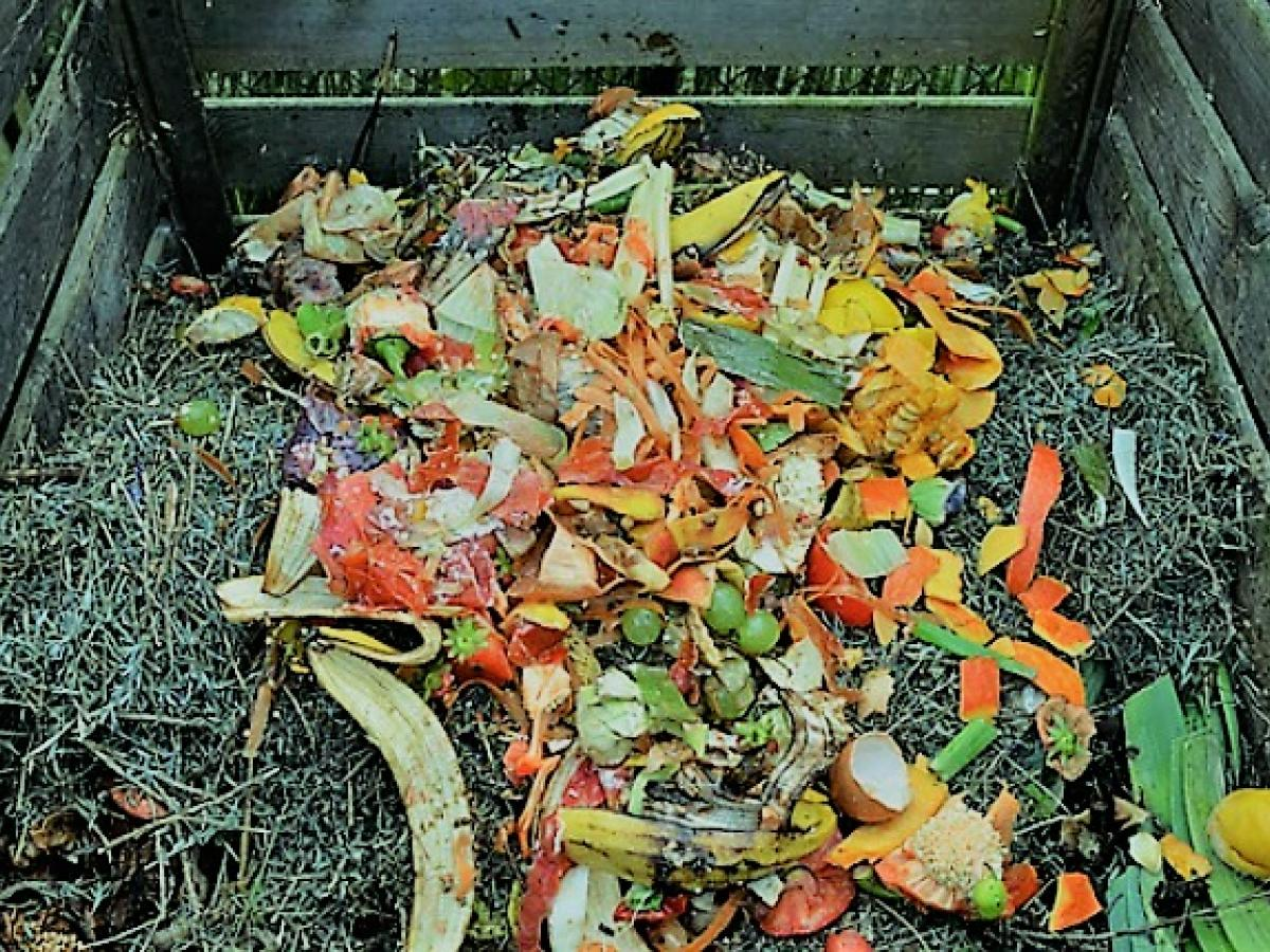 Keep Your Compost Cosy This Winter