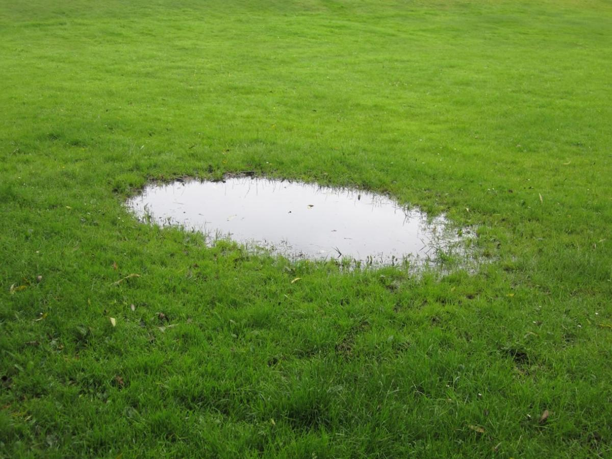 Advice About Areas Of Lawn Where Puddles Form